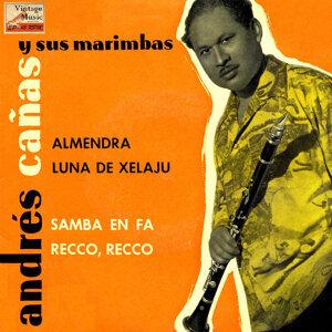 Vintage Brasil No. 12 - EP: Samba En Fa