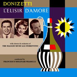 Donizetti L'Elisir D'Amore
