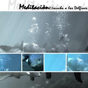 Meditación, Escucha  A Los Delfines