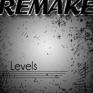 Levels (Avicii Remake) - Single