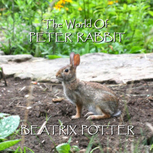 Beatrix Potter - The World Of Peter Rabbit