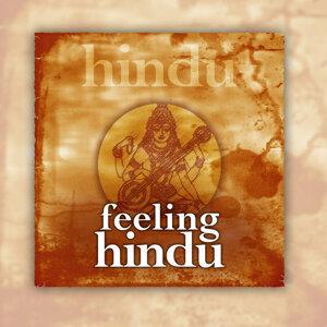 Feeling Hindu