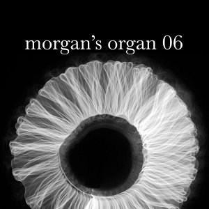 Morgan's Organ 06