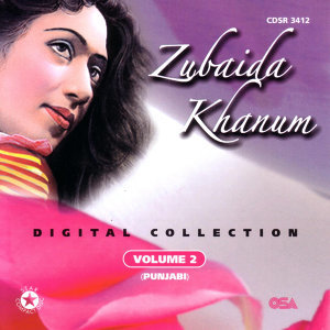Digital Collection Volume 2 (punjabi)