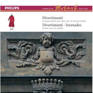 Mozart: Complete Edition Box 3: Divertimenti & Serenades