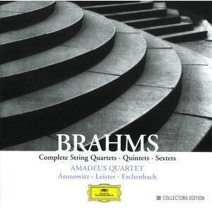 Brahms: Complete String Quartets, Quintets & Sextets - 5 CDs