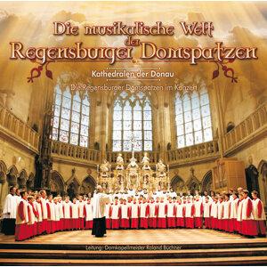 Die musikalische Welt der Regensburger Domspatzen - Kathedralen der Donau