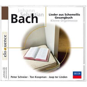 J.S. Bach: Aus Schemellis Gesangbuch - Eloquence