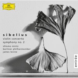 Sibelius: Violin Concerto Op.47; Symphony No.2