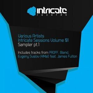 Intricate Sessions, Vol. 1 - Sampler, Pt. 1