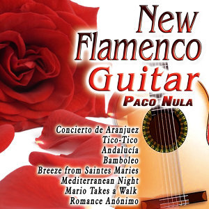 New Flamenco Guitar