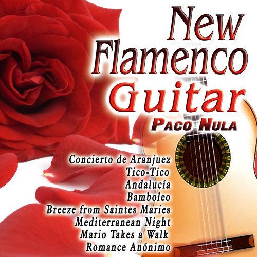 New Flamenco Guitar