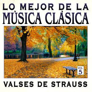 Música Clásica Vol.5: Valses de Strauss