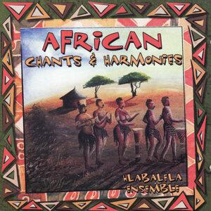 African Chants & Harmonies