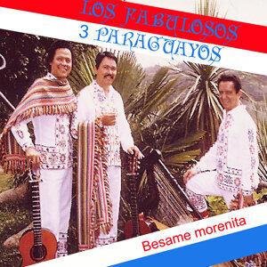 Los Fabulosos Tres Paraguayos