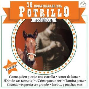 16 Inolvidables Del Potrillo