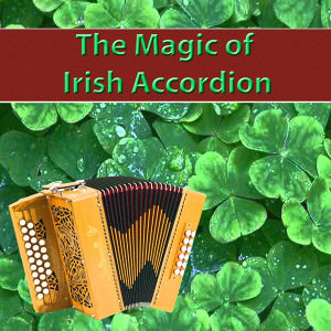 The Magic of Irish Accordion