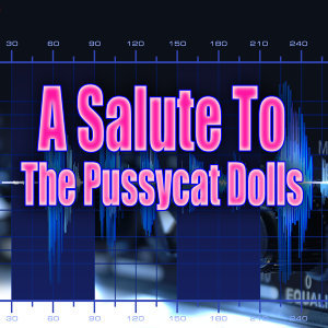 A Salute To The Pussycat Dolls