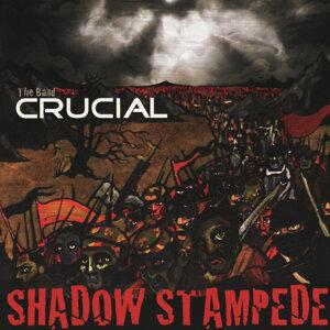 Shadow Stampede