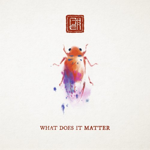 What Does It Matter