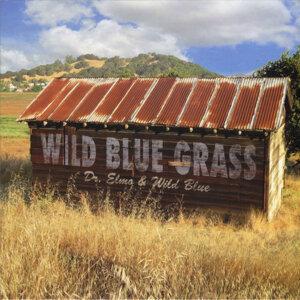 Wild Blue Grass