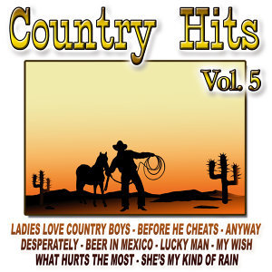 Country Hits Vol.5