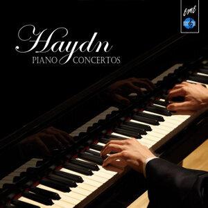 Piano Concertos: Haydn