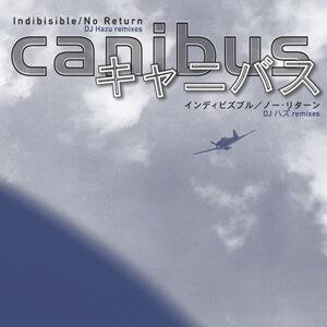 "Indibisible (DJ Hazu Remix) [Japanese Import] [12""]"