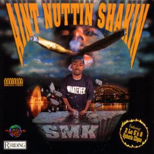 Aint Nuttin Shakin