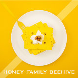 Honey Family BeeHive Project Vol.4