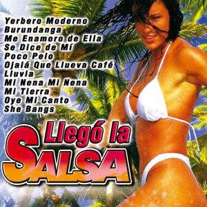 Salsa Vol.4