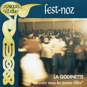 Fest Noz - Collection Musiques Celtiques