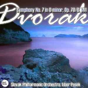 Dvorak: Symphony No. 7 in D minor, Op. 70/B. 141