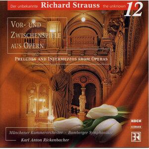 Vor- und Zwischenspiele aus Opern