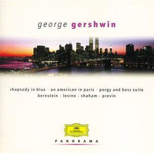 Gershwin - Set: Bernstein/Ozawa/Previn/Levine - 2 CDs
