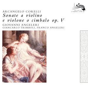 Sonate a violino e violone o cimbalo op. 5