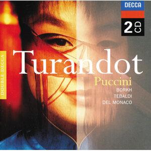 Puccini: Turandot - 2 CDs