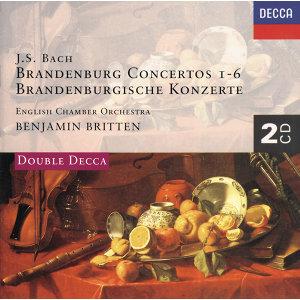 Bach, J.S.: Brandenburg Concertos etc. - 2 CDs