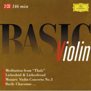 Basic Violin