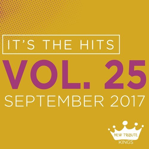 It's the Hits! 2017, Vol.25