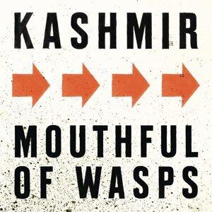 Mouthful Of Wasps