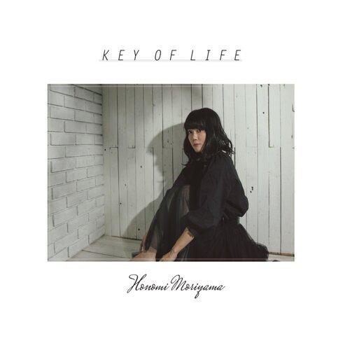 KEY OF LIFE (KEY OF LIFE)