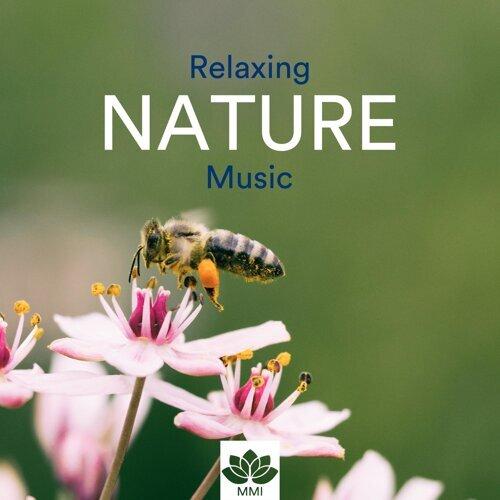 Relaxing Nature Music - Qi Gong, Yoga, Tai Chi, Reiki, Mindfulness Meditation & Inner Peace