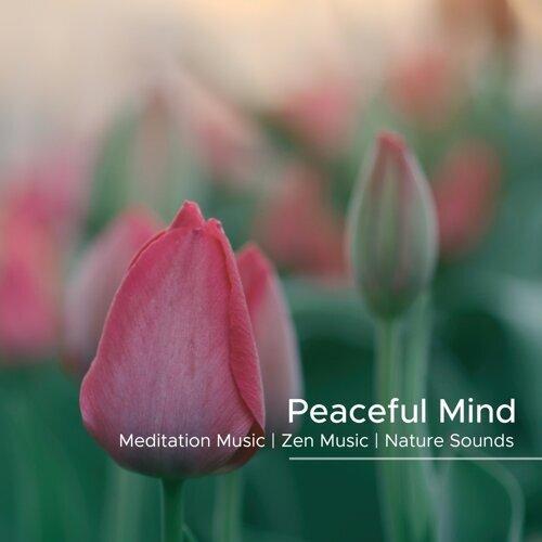 Peaceful Mind - Breathing Exercises, Meditation Music, Zen Music, Nature Sounds for Deep Meditation