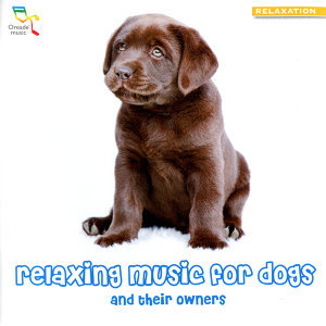 Relaxing Music for Dogs - and Their Owners