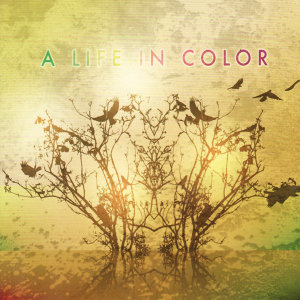 A Life In Color