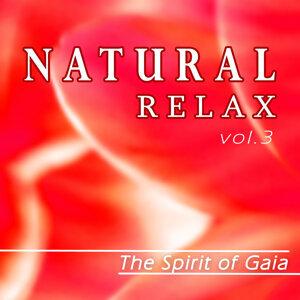 Natural Relax, Vol.3