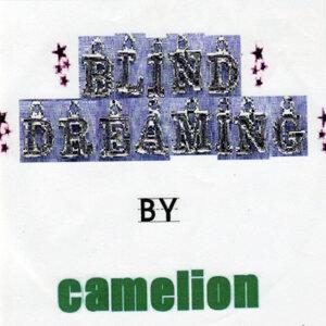 Blind Dreaming