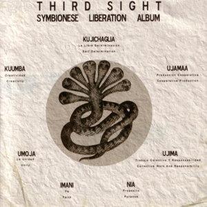 Symbionese Liberation Album