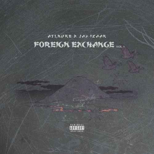 Foreign Exchange Vol.1